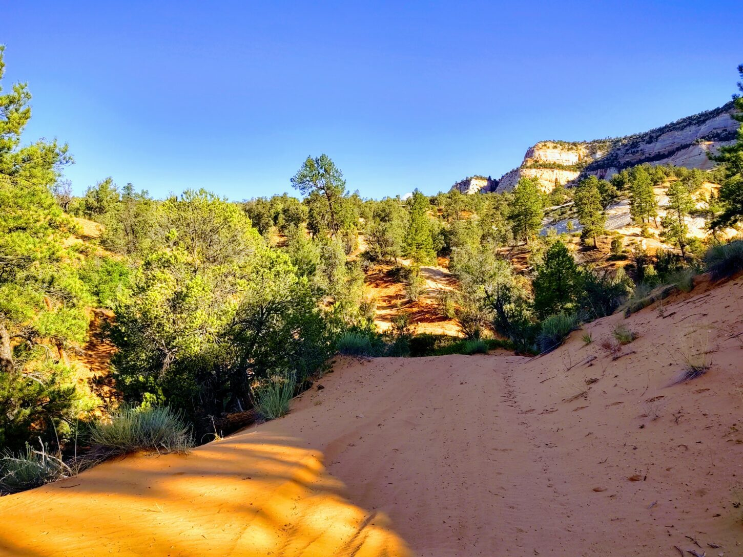 The ATV trail east zion
