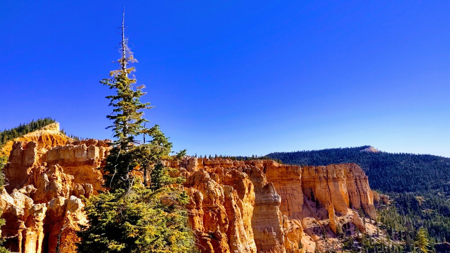 Away from the crowds in Bryce canyon